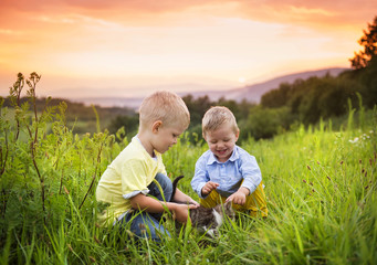 Little boys having fun on a meadow