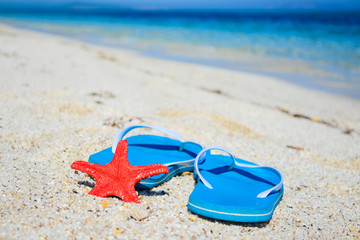 flip flops and red starfish by the sea