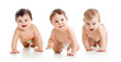 cute babies toddlers crawling - 79100330