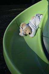 Teddy bear sullo scivolo