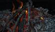 Leinwandbild Motiv Beautiful coals after fire