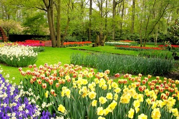 Spring flowers at Keukenhof Gardens, Netherlands
