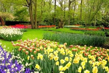Spring flowers at Keukenhof Gardens, Netherlands