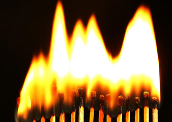 Line of lighted matches on black background
