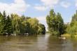 Dutch river in landscape