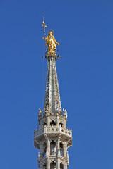 Duomo di Milano: la guglia della Madonnina