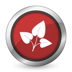 leaf red icon nature sign