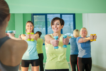 Small group of women are doing exercises with the dumbbell in th