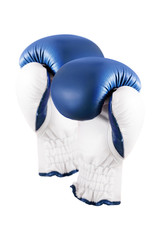 Boxing glove on the hand