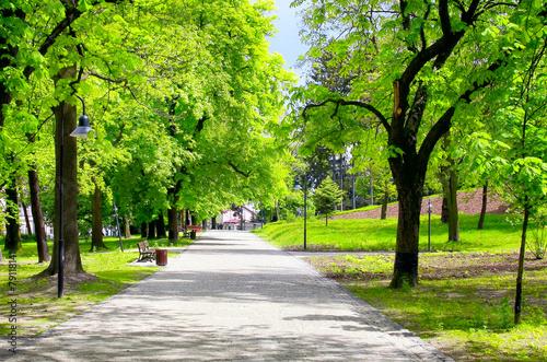 Leinwanddruck Bild Green city park