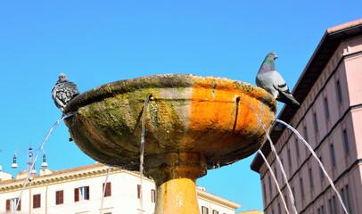 Fountain St. Mary major, Rome, Italy