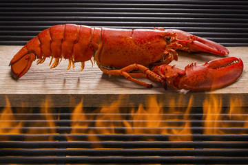 Fresh Lobster Over a Hot Flaming Barbecue Grill