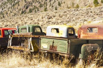 Old trucks in field
