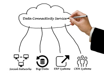 Data Connectivity Service