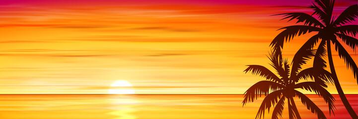 Palm Trees with Sunset, Sunrise.