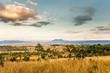 Leinwanddruck Bild - sunrise in savanah meadow