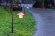 walkway lighting - 79131173