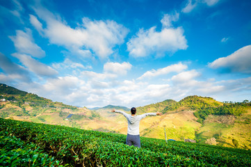 Women looking at tea plantation field.