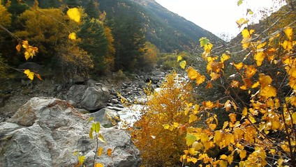 Beautiful autumn landscape with golden trees, mountain and river