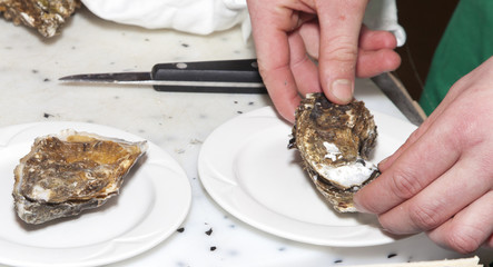 Chef is opening fresh oyster, close-up
