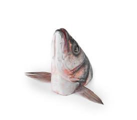 carp head