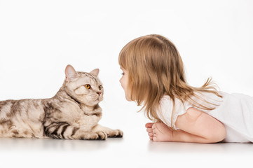 Little girl with a British cat, on a gray background