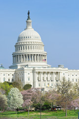 Washington DC, United States Capitol Building in Spring