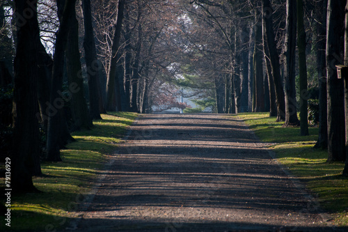 Foto Spatwand Begraafplaats Friedhofsallee #0398