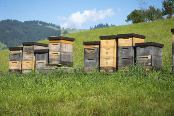 Bienenkörbe, Tirol