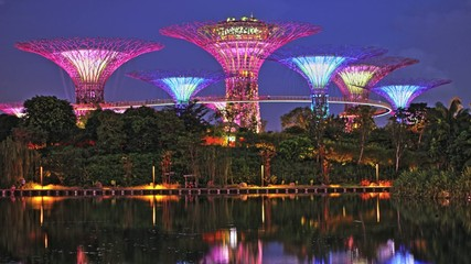 Asian Travel Architecture -  Marina Bay Lights Time Lapse
