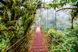 Most w Rainforest - Kostaryka - Monteverde