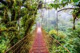 Fototapety Bridge in Rainforest - Costa Rica - Monteverde