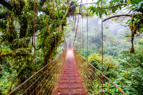 Papiers peints Forets Bridge in Rainforest - Costa Rica - Monteverde