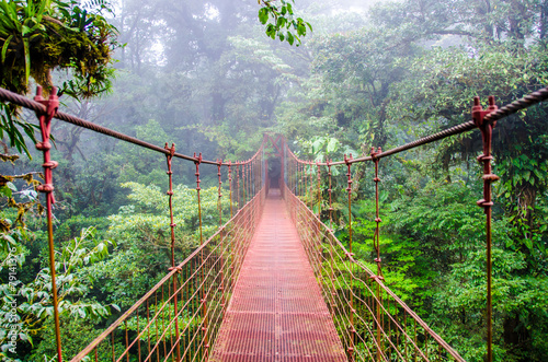 Poster Bossen Bridge in Rainforest - Costa Rica - Monteverde