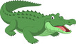 Funny crocodile - 79141546