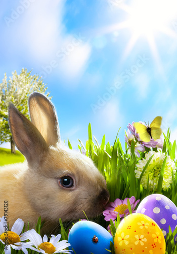 art Little Easter bunny and Easter eggs on green grass - 79143120