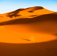 Sand Dunes in the Sahara Desert in Morocco