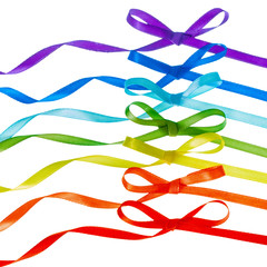 rainbow bows, gay LGBT sign is isolated on white background, gay