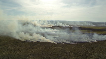 burning grass in  steppe with   smoke. Aerial shot.