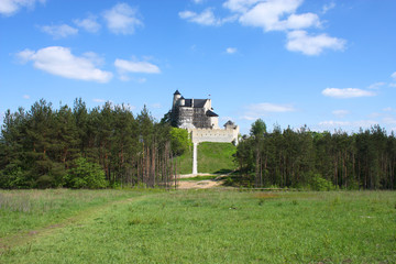 Polish castle in Bobolice