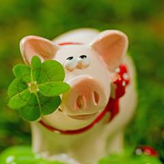 Glücksschwein, Figur mit Kleeblatt