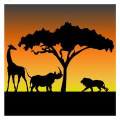 Silhouettes of a giraffe, a rhino and a lion