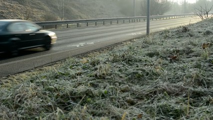 road with cars - nature (grass - morning dew)