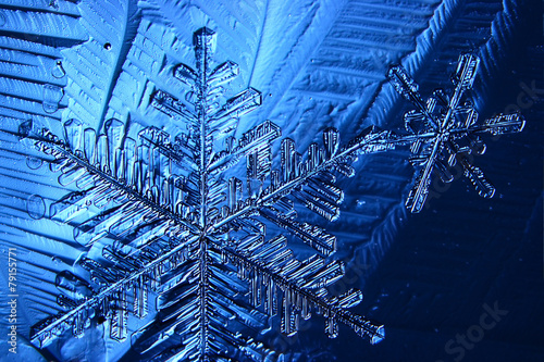 snowflake crystal blue background - 79155771