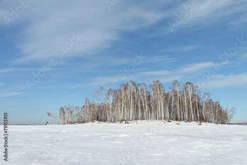 canvas print picture Trees on the snow-covered island