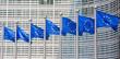 European flags in Brussels - 79156703