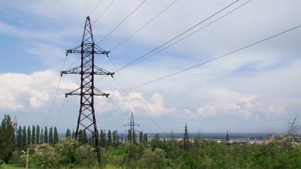 Electric Pylon In Greenery