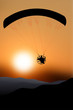 Flying paraglider silhouette at sunset - 79161928