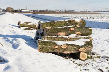 Scenic cold winter landscape