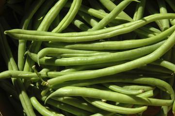 Habichuelas verdes